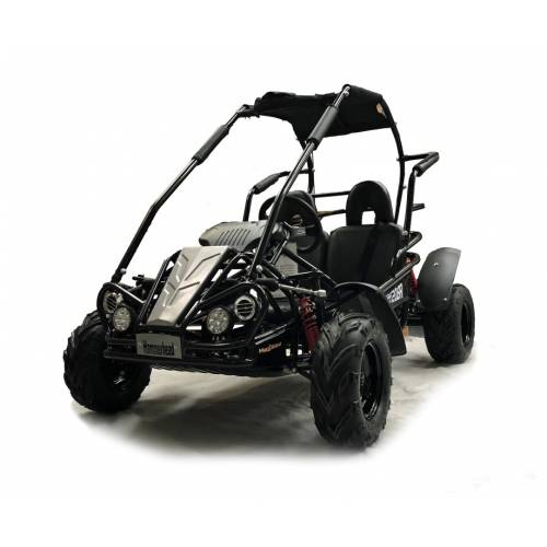 Black Hammerhead™ Mudhead™ Reverse 208R Junior Off Road Buggy