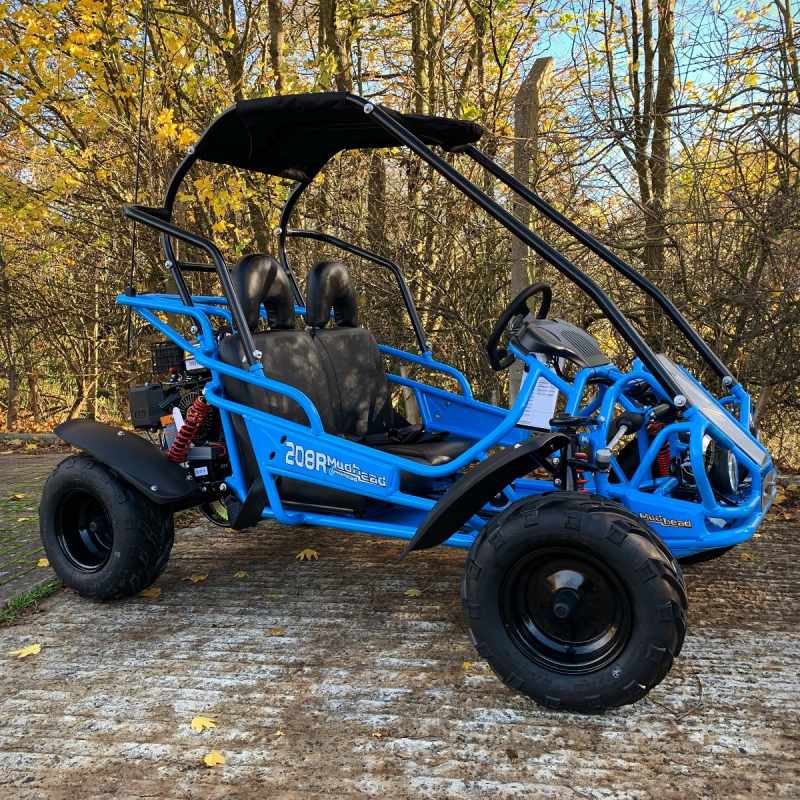 Blue Hammerhead™ Mudhead™ Reverse 208R Junior Off Road Buggy