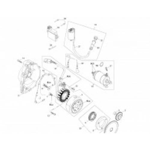 Electrics / Starter Motor
