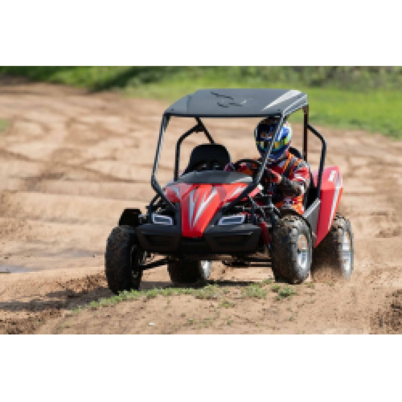 Hammerhead™ GTS150 LE Off Road Buggy