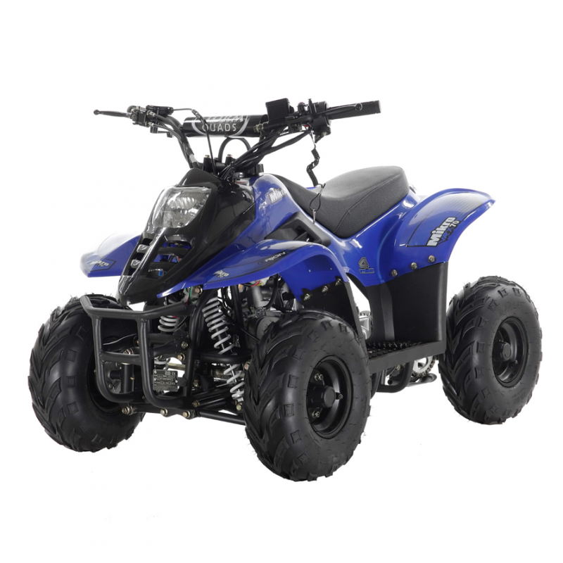 Mikro 70cc Kids Quad Bike Blue