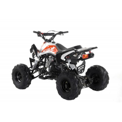 Orange Panther 110cc Kids Quad Bike - 2021 Spec