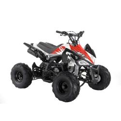 Red Panther 110cc Kids Quad Bike - 2021 Spec